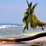 Mentawai Beach